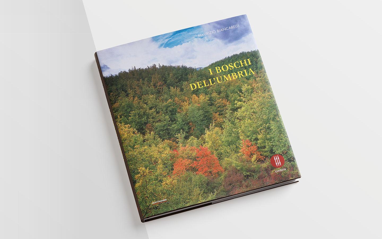 I boschi dell'Umbria copertina